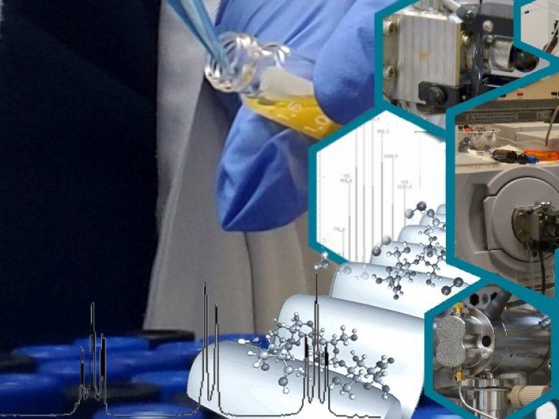 Środowiskowe Laboratorium Fizykochemicznych Badań Związków Organicznych  i Polimerów